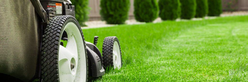 lawn care guides main