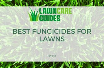 best fungicides for lawns