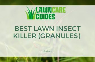 Best Lawn Insect Killer (Granules)