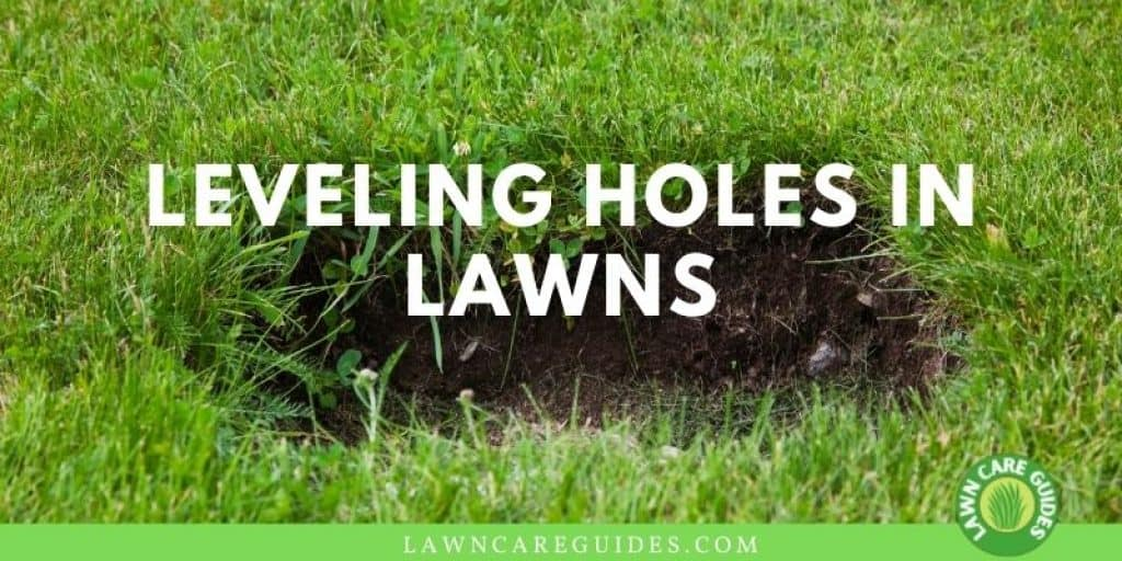 Leveling Holes In Lawns