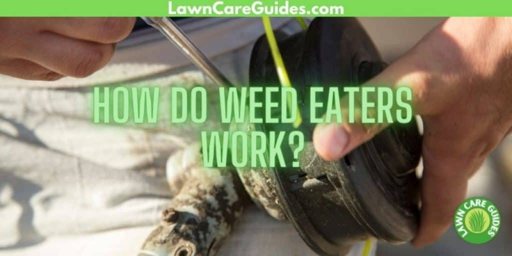 how do weed eaters work?