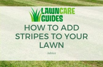 how to add stripes to your lawn