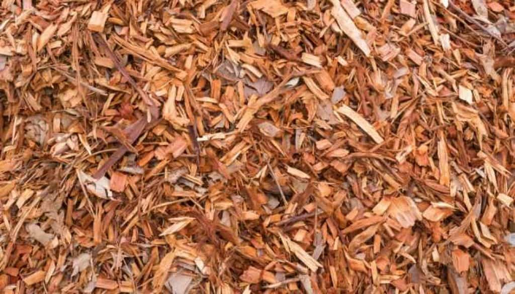 use mulch to control weeds