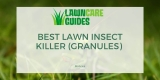 6 Best Lawn Insect Killer (Granules) Reviews 2021