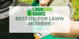 Best Oil For Lawn Mowers – Use This Not That…