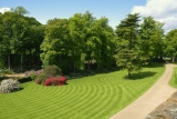 The Best Lawn Mower For Stripes + Striping Kit Reviews